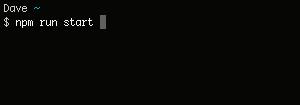 npm_run_start