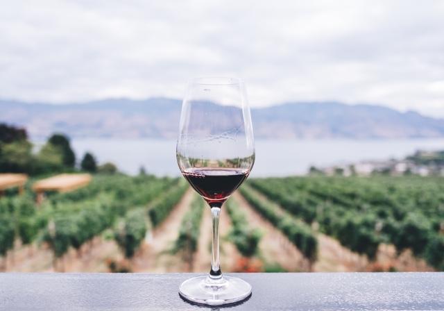 Wine Festival Schedule