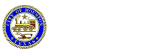 Houston Data Portal Logo