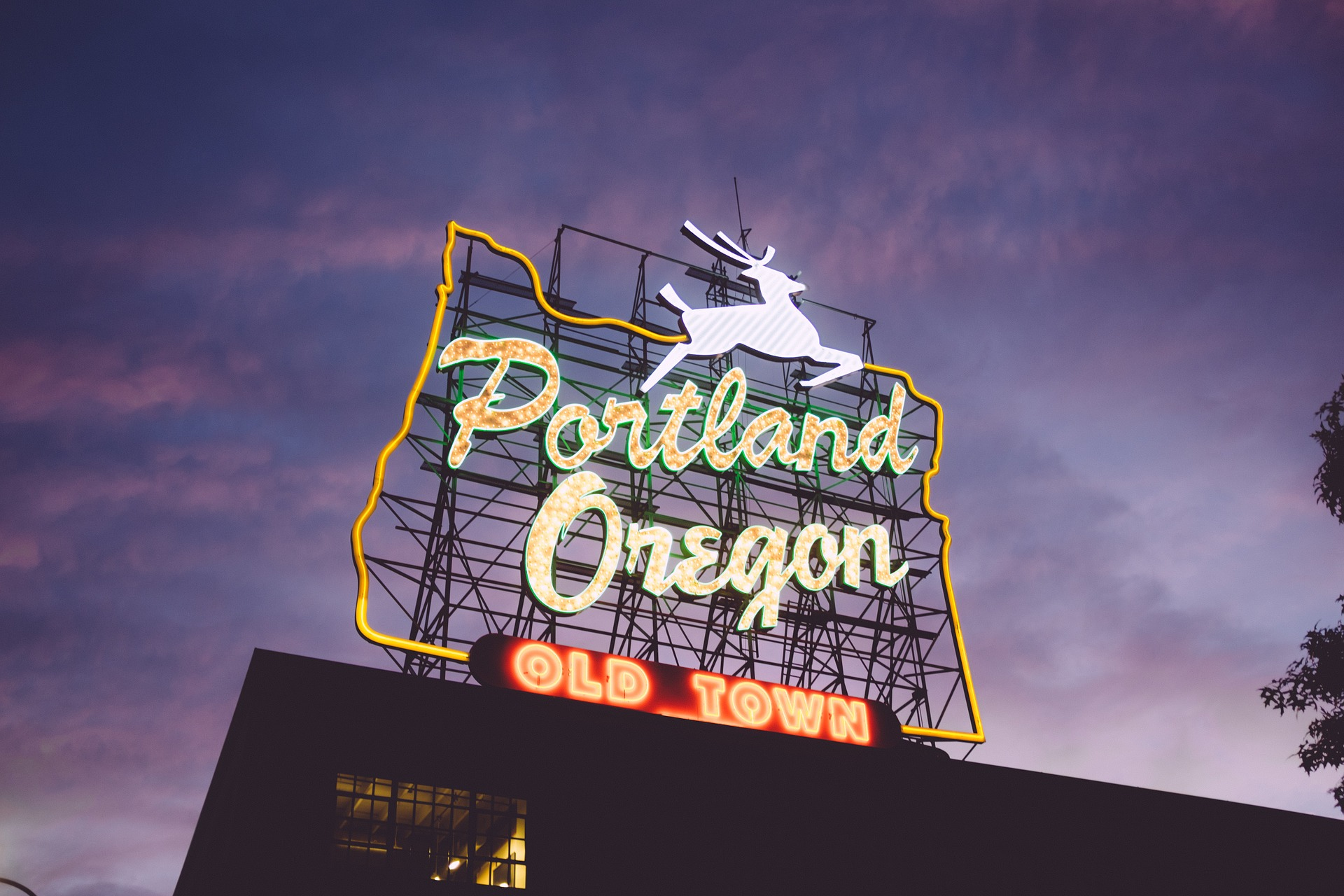 coding bootcamps in portland