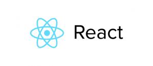 ReactJS JavaScript development