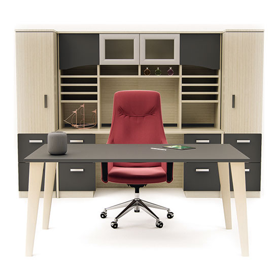 Modern Executive Office