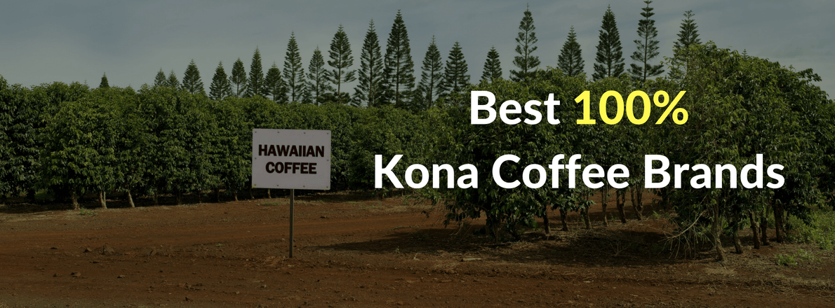 These are the best hawaiian coffee brands