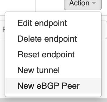 Create new eBGP Peer in VNS3
