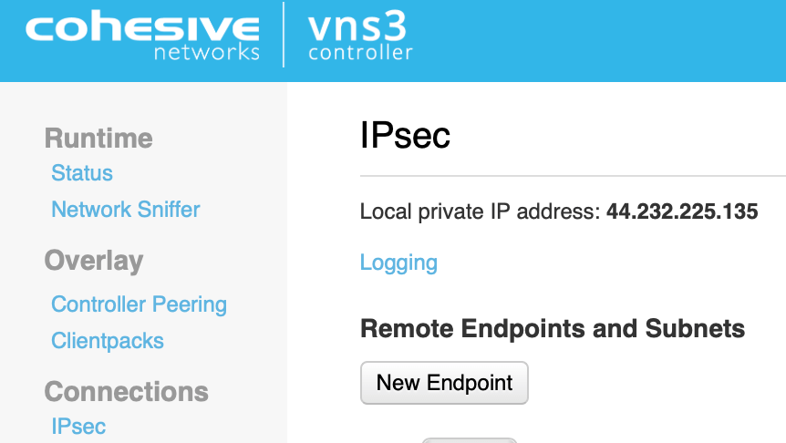 Creating a new endpoint in VNS3