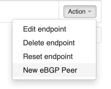 VNS3 create new bgp peer