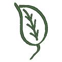 Fichier à broder gratuit :Feuille verte