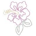 Fichier à broder gratuit :Hibiscus fuchsia - Lignes
