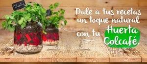 Huerta colcafé 4web