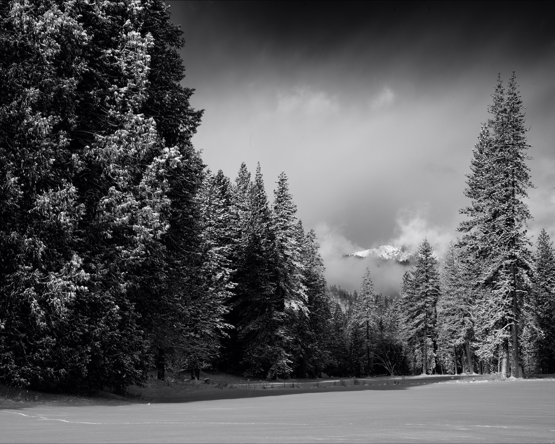 Yosemite national park california wawona snow storm