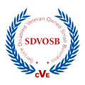 Colorful Dots, LLC - Certified Service Disabled Veteran Owned Small Business (SDVOSB)