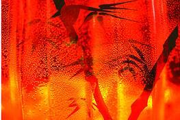 Orange Bamboo by John Cranshaw