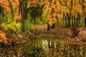 The Pond in Autumn by Martin Steinhausen