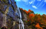 Hickory Falls by Gregory Allen Butler