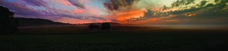 Pink Morning Panorama by Dennis Newton