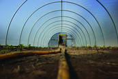 Hoop House by David Schamberger