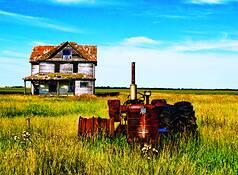 Tractor by Doug Convente