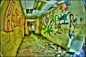 Hall of Flowers&Graffiti by Steven Dembo