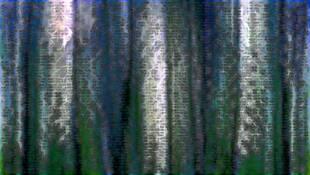 Landscape Metamorphosis #21 by Francois Breton