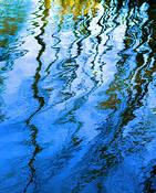 Blue Vibes by Joanne Scherf
