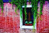 Brick House with Ivy by Jill O. Merriam