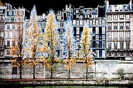 River Seine by Marian Crostic