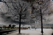 Tuileries by Marian Crostic