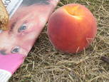Blair And The Giant Peach by Francine Douaihy