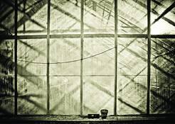 Window 10 by Melissa O'Shaughnessy