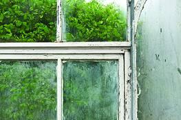 Window 2 by Melissa O'Shaughnessy