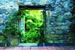 Window 3 by Melissa O'Shaughnessy