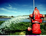 Red Hydrant by Matthew C. Miller
