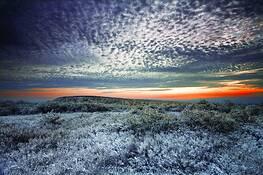 Ice Storm 1 by Michael P. Gadomski