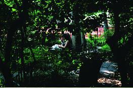 Garden by Vasilios Sfinarolakis