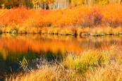 Fall Reflections by Marybeth Flower
