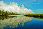 Ochlockonee River after Summer Storm by Riko Carrion
