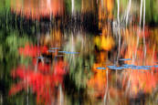 Signs of Fall by Laurie B. McCormick