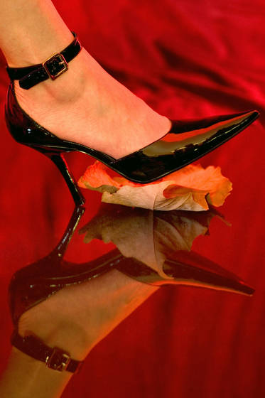 The shoe and the leaf