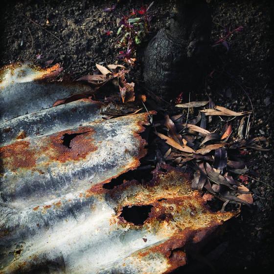 Burnt 2