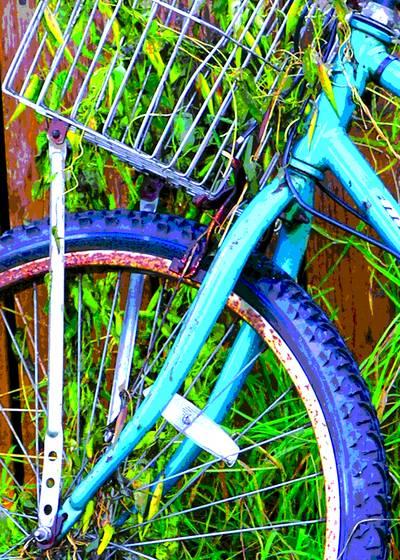 Bike and grass