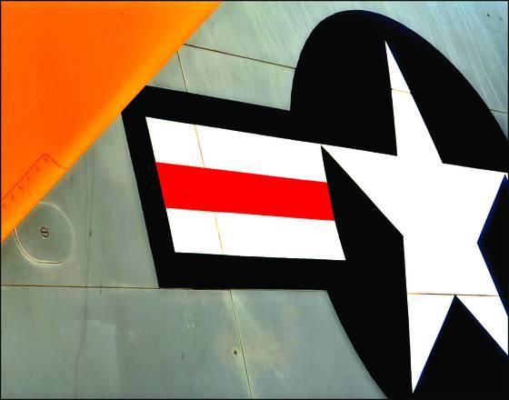 Fuselage insignia