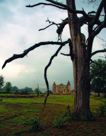 Chateau de caumale