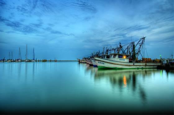 Harbor blue hour