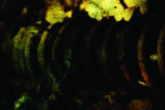 Junkyard   coil