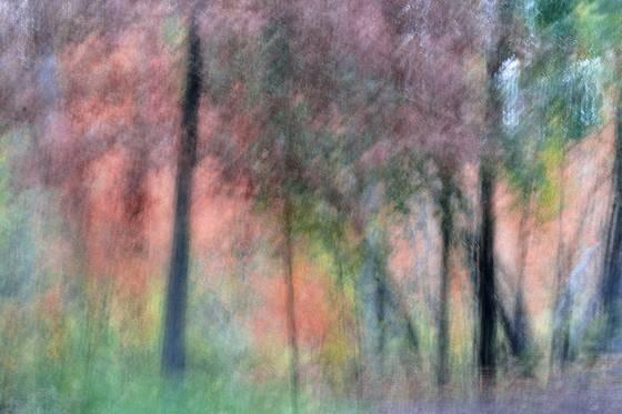 Autumn rhythm 2