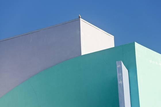 Miami curves and bird