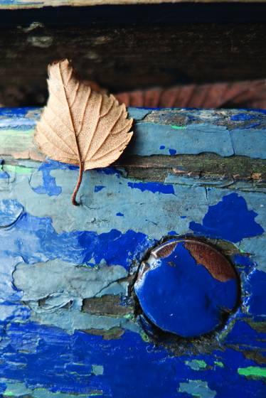 Blue fall