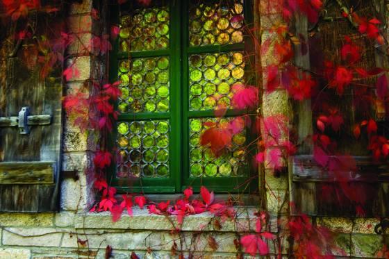 Acadia window