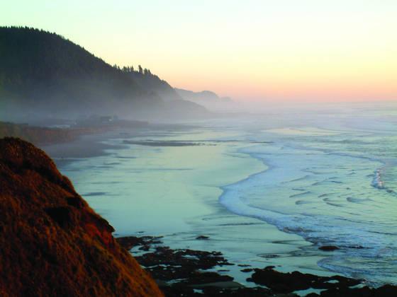 Sea rose beach at sunset