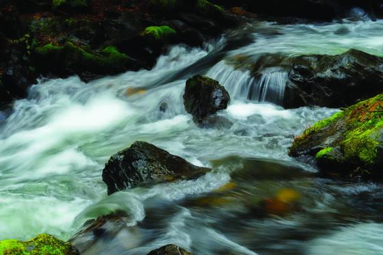 River ranch 4